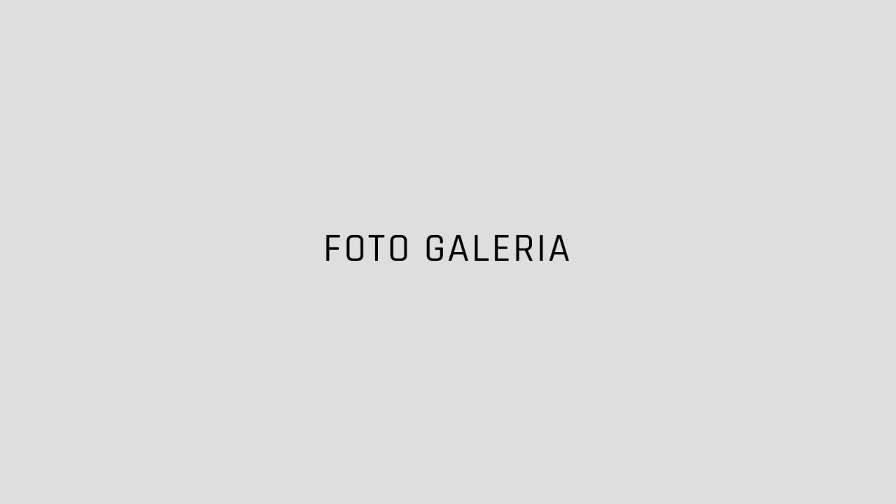 galeria-thumb
